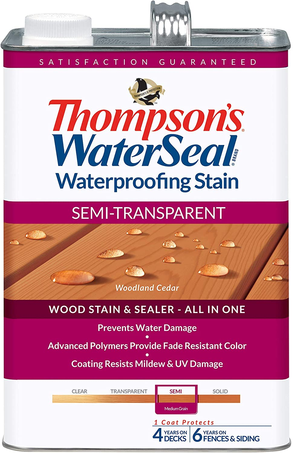 Thompson's WaterSeal Semi-Transparent Waterproofing Wood Stain