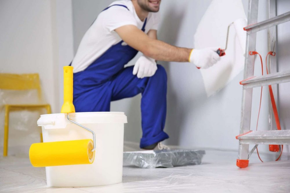 5 Best Interior Paint Primers