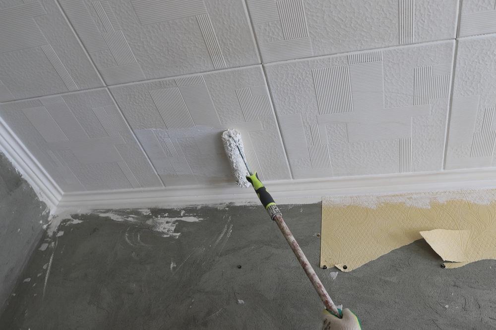 Best Paint Primers For Bathroom Ceiling, Primer For Bathroom Ceiling