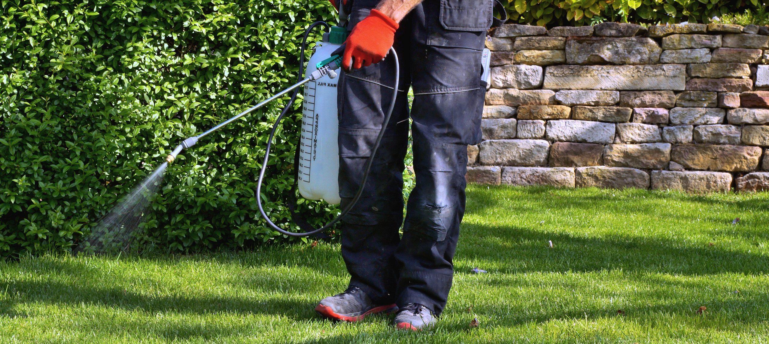 pump sprayer in the garden